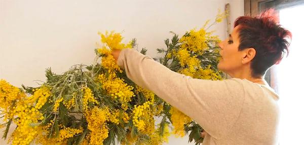 Formación contínua de florista. Nube de mimosa, decoración suspendida
